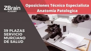 Convocatoria 39 plazas Técnico especialista en anatomía patológica para el Servicio Murciano de Salud. 3