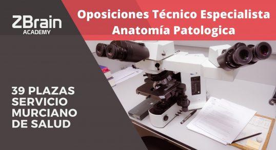 Convocatoria 39 plazas Técnico especialista en anatomía patológica para el Servicio Murciano de Salud. 1